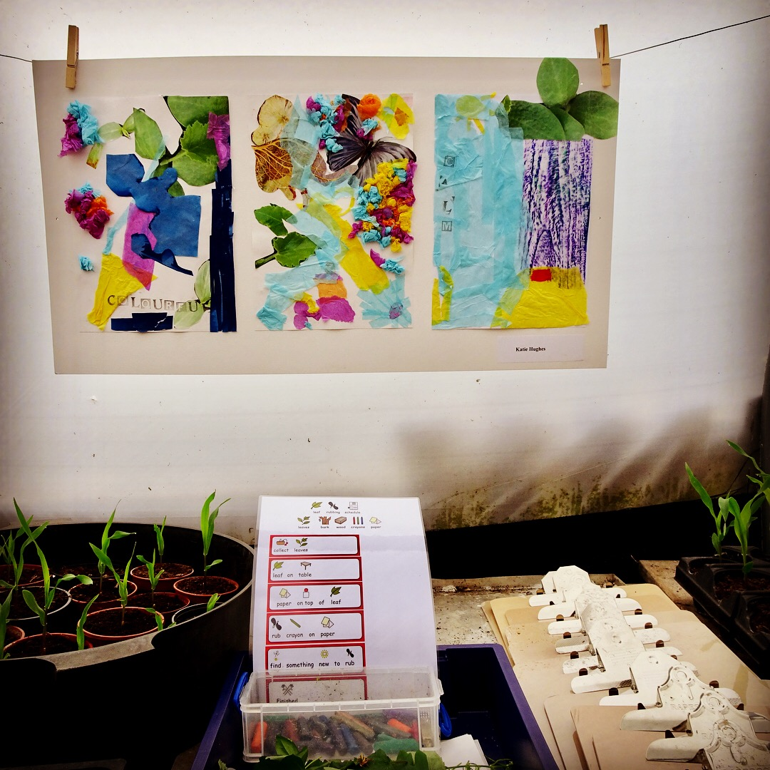 Collage on display at Sensing nature open day